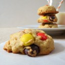 Panera-Bread-Reeses-Cookies-Peppermint-Biscotti-029a
