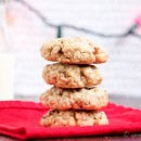 Spiced-Oatmeal-Cinnamon-Chip-Cookies-9