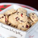 Dark-Chocolate-Orange-Cranberry-Cookies-5538