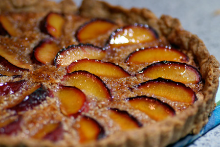 Plum Almond Tart