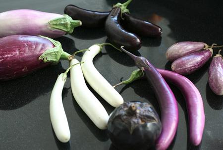 Seven Varieties of Eggplant