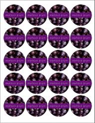 Free Printable Canning Labels - Damson Plum