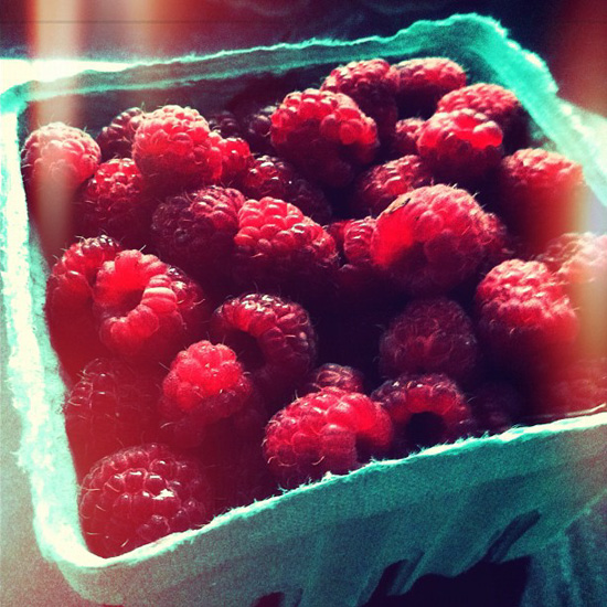 Tennessee Raspberries