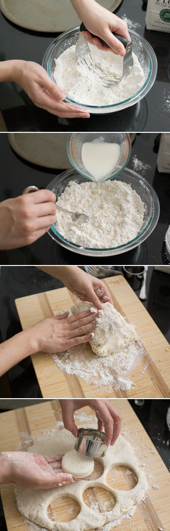 How to Make Fluffy and Flaky Buttermilk Biscuits