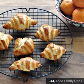Cat, FoodFamilyFinds