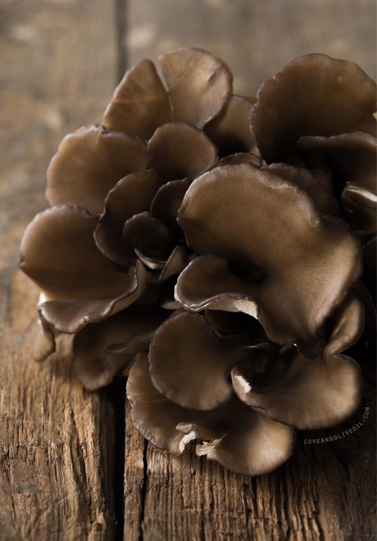 """Maitake """"Hen of the Woods"""" Mushroom"""
