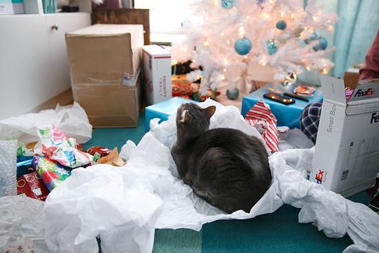 Desmond Loves Christmas
