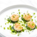 Seared Scallops with Basil and Olive Oil Pistou
