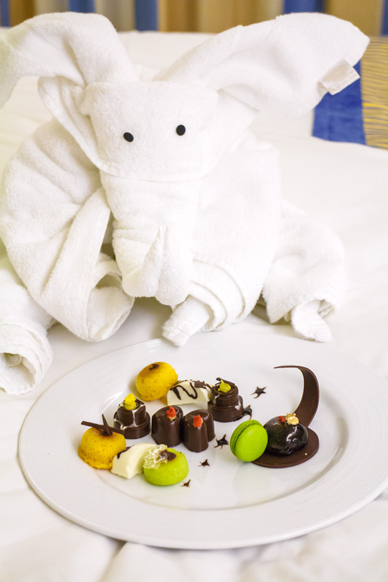 Carnival Foodie Cruise - Towel Elephant and a Special Sweet Treat