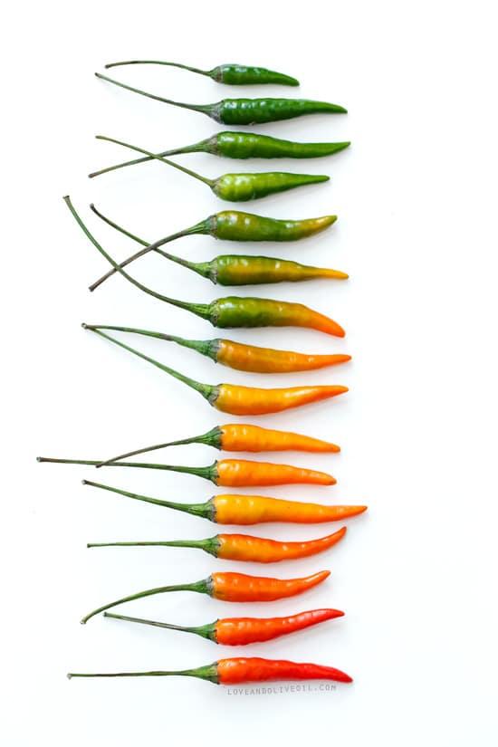 Hot Pepper Gradient