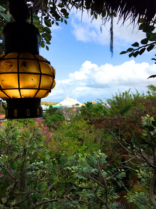Room with a View, Walt Disney World