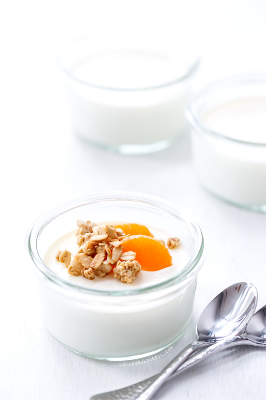 March Kitchen Challenge Results: Homemade Yogurt | Love and Olive Oil