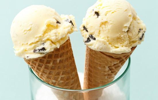 Sea Salt Vanilla Fudge Chunk Ice Cream
