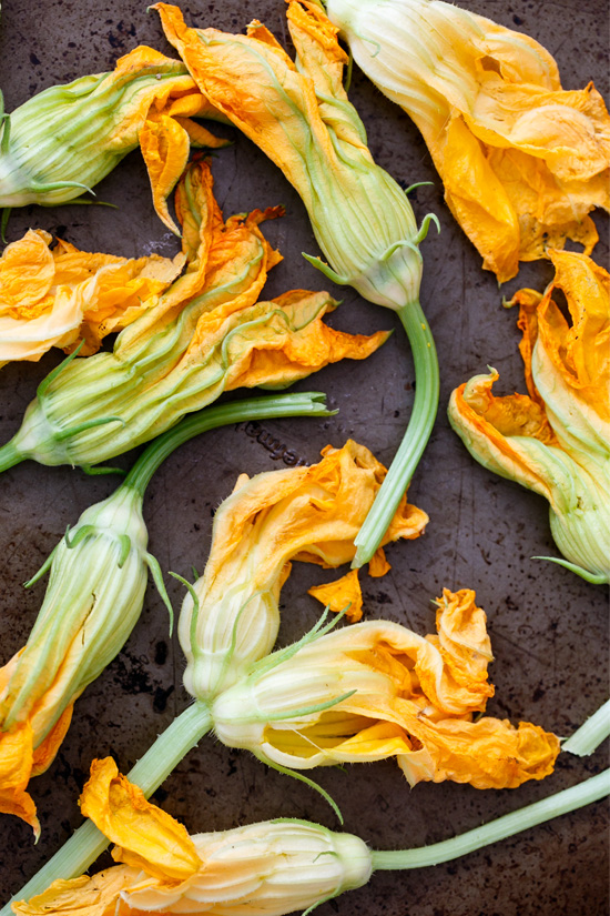 Fresh Zucchini Blossoms for frying