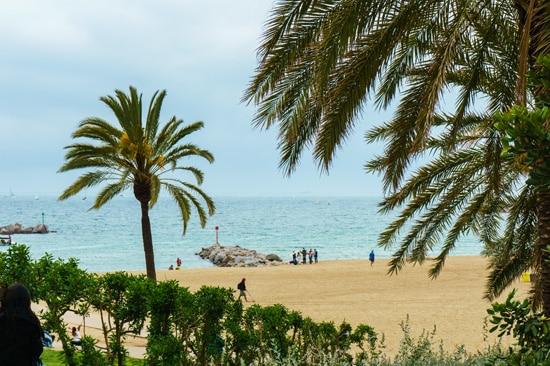 La Barceloneta beach, Barcelona Spain