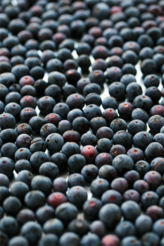 How to Freeze Blueberries: Pick now, enjoy all year long!