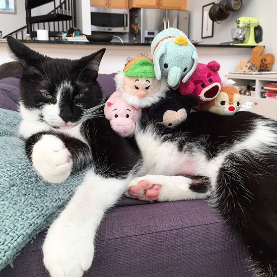 Sgt Pepper and his Tsum Tsum buddies