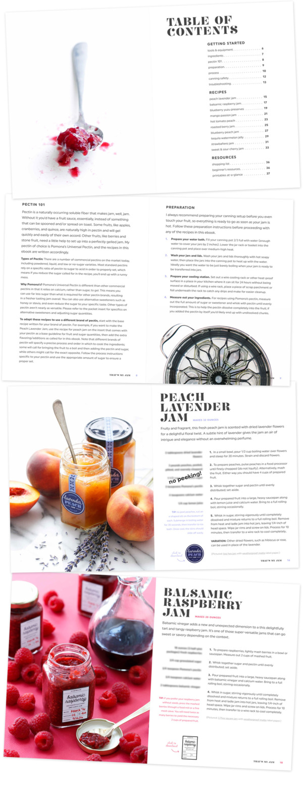 That's My Jam eBook Series: Seasonal Jam Recipes & Printable Labels