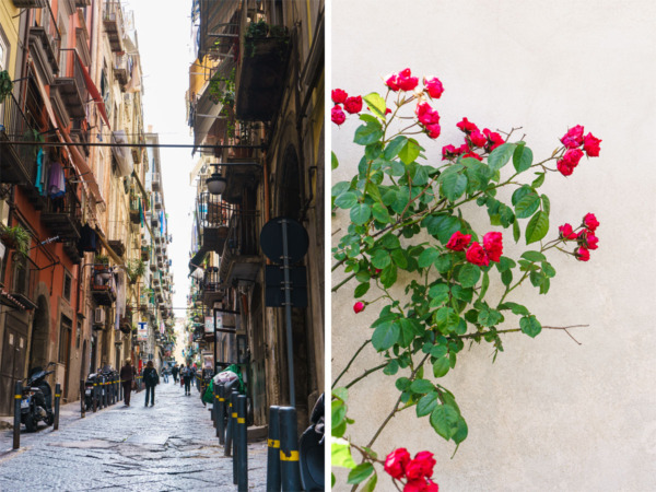 Carnival Vista Mediterranean Cruise: Flowers in Naples, Italy