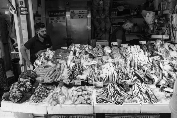 Carnival Vista European Cruise: Seafood Market in Crete (Heraklion) Greece