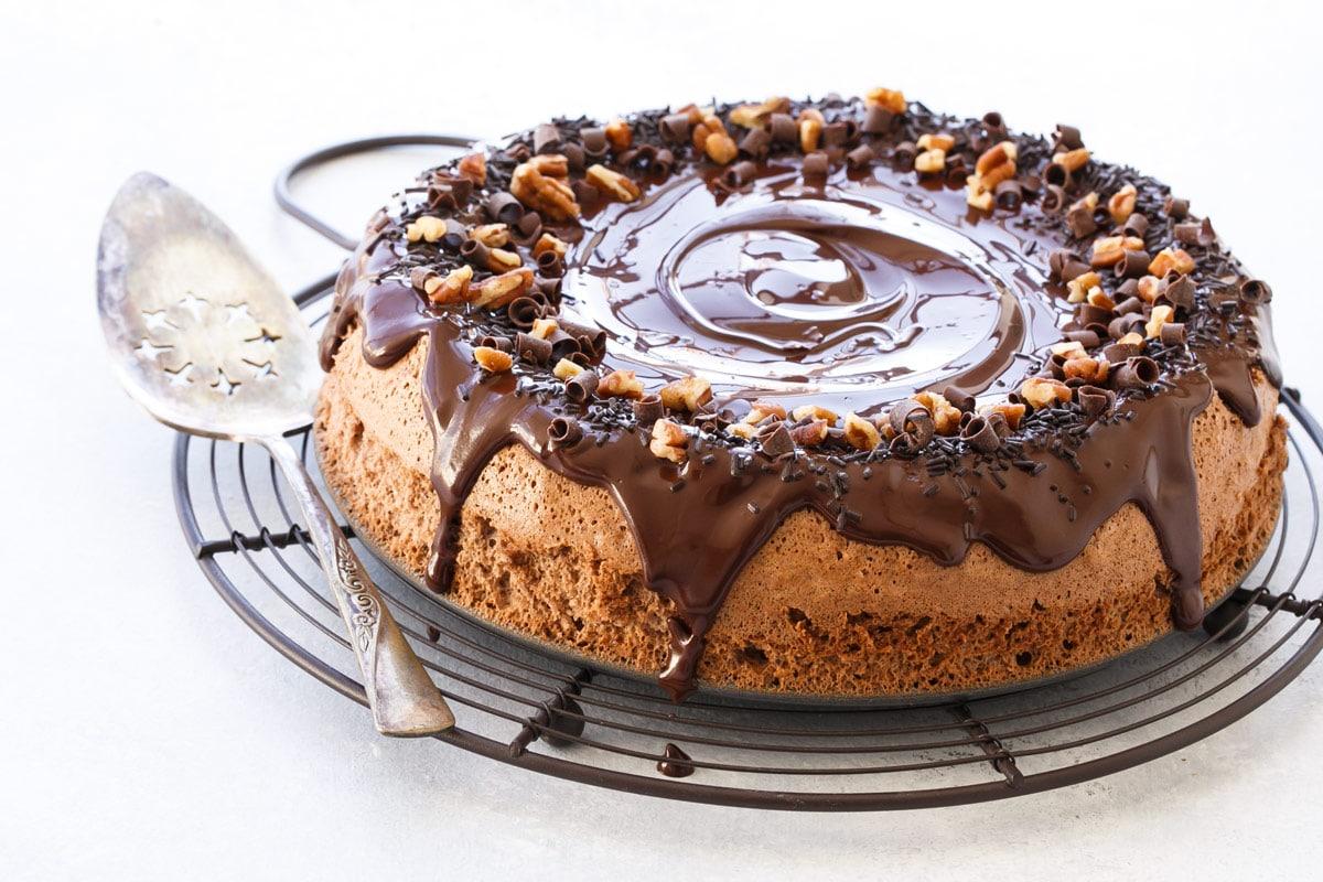 Cocoa Pecan Torte
