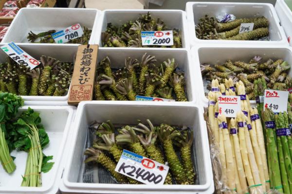 Fresh wasabi at Tsukiji Fish Market, Tokyo, Japan