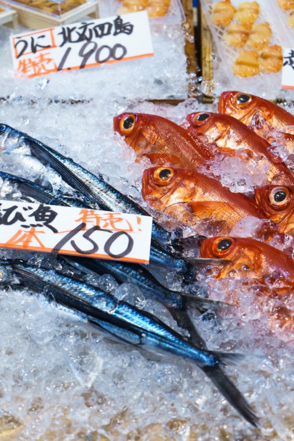 Nishiki Fish Market, Tokyo, Japan