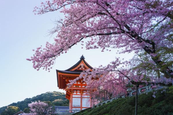 Kiyomizu-dera Temple at Sunrise, Kyoto, Japan