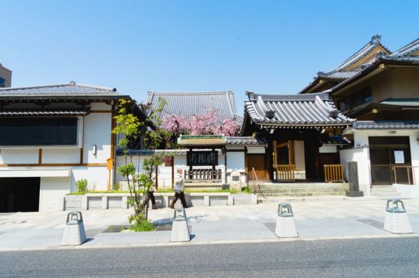 Streets of Nara, Japan