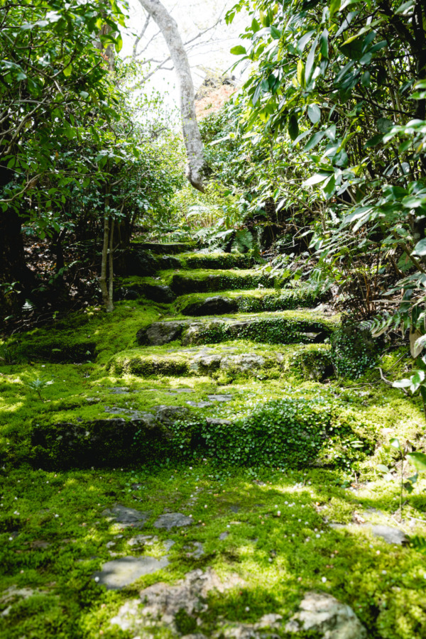 Okochi Sanso Garden, Kyoto Japan