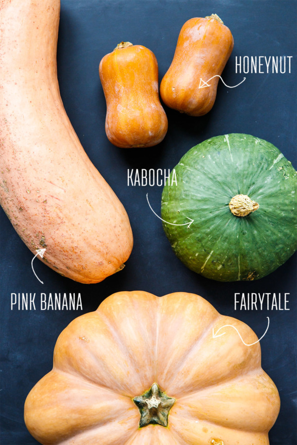 Banana, Honeynut, Kabocha, or Fairytale: Which kind of squash makes the best pumpkin pie?