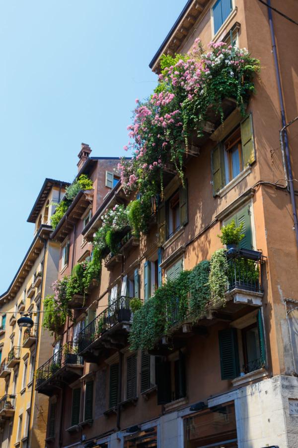 Lush Balconies in Verona, Italy