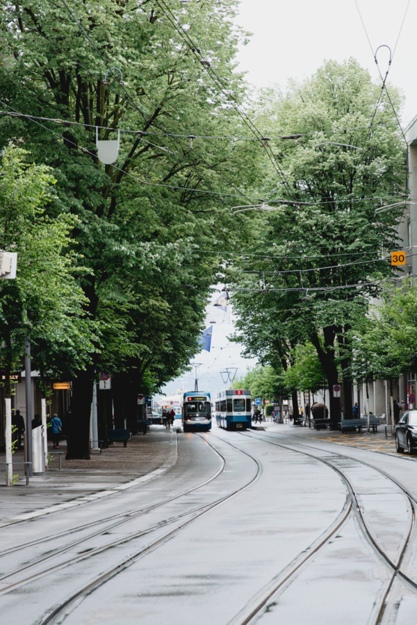 Tree-lined street and trolley car, Zurich, Switzerland