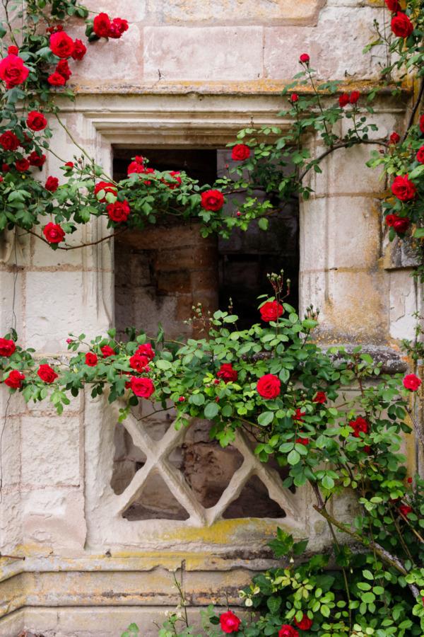 Gardens of Château de Montreuil-Bellay, France