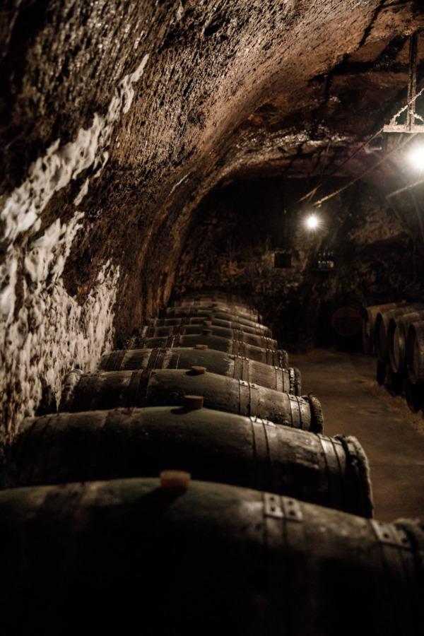Le Petit Saint Vincent winery, Varrains, France