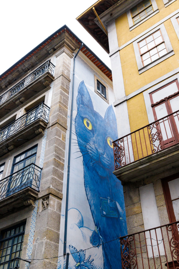 Big blue cat mural hidden in an alleyway, Porto, Portugal