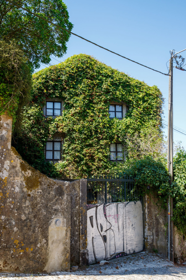 Ivy-covered house in the town of Sintra, Portugal