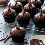 Ultimate Chocolate Cupcakes with Chocolate Fudge Frosting Recipe