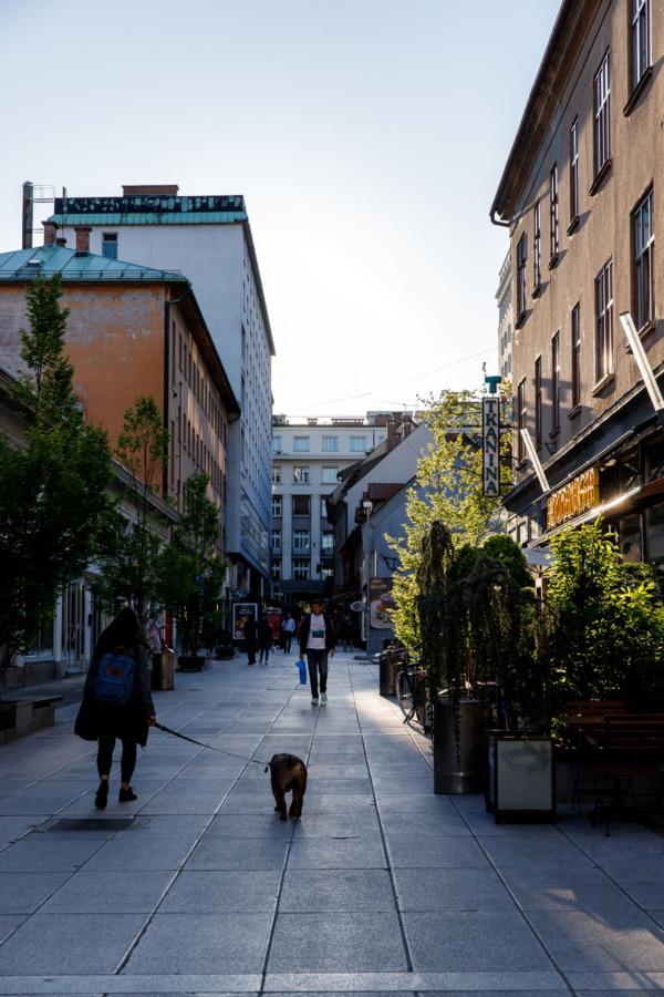 Woman walking a dog along a street in Ljubljana, Slovenia